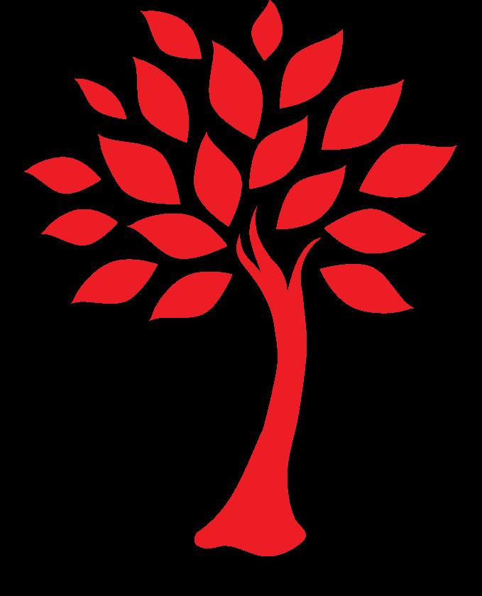 L'Arbre Rouge Ecole de Naturopathie Formation Lyon